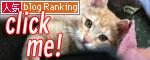 活発子猫とおっとりスコ猫_d0355333_16371730.jpg