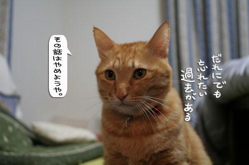 祝★特別賞受賞_d0355333_16372163.jpg