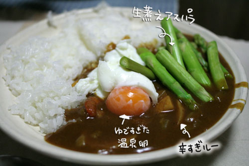 オツトカレー de ねこ鍋_d0355333_16372593.jpg