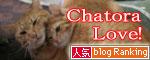 「ネコを撮る」_d0355333_16380792.jpg