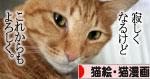朝日は猫と相性がいい_d0355333_16384698.jpg