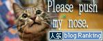 サビ猫撮影のヒミツ★動画つき_d0355333_16391291.jpg