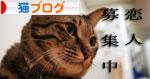 猫にもバレンタイン_d0355333_16393033.jpg