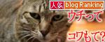 猫にもバレンタイン_d0355333_16393165.jpg