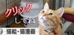 猫の寝顔ってステキ_d0355333_16394790.jpg