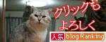 魚を焼いたら猫集合_d0355333_16400956.jpg