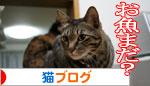 魚を焼いたら猫集合_d0355333_16400978.jpg