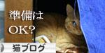 猫マンション(屋上つき)★追記あり_d0355333_16410973.jpg