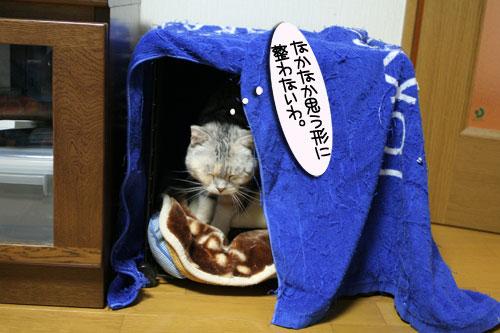 猫マンション(屋上つき)★追記あり_d0355333_16410978.jpg