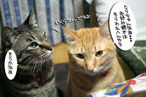 関西名物粉モンパーティ_d0355333_16413451.jpg