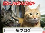 関西名物粉モンパーティ_d0355333_16413541.jpg