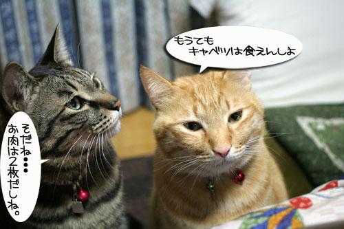 関西名物粉モンパーティ_d0355333_16413588.jpg