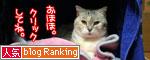 松野議員の講演会に行ってきました_d0355333_16430382.jpg