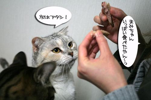 松野議員の講演会に行ってきました_d0355333_16432836.jpg