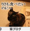 猫草フィーバー!_d0355333_16433582.jpg