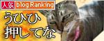 動画★笑子ちゃん参戦_d0355333_16463565.jpg