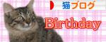 大ちゃん誕生日とマラソン_d0355333_16482040.jpg
