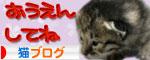 赤ちゃん猫★体重増えたよ!_d0355333_16484409.jpg