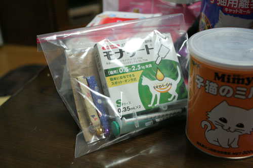 赤ちゃん猫★体重増えたよ!_d0355333_16485556.jpg