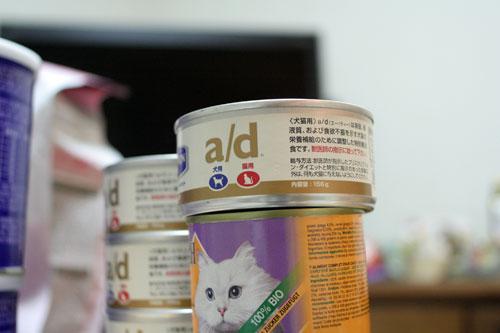 赤ちゃん猫★体重増えたよ!_d0355333_16485595.jpg