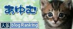 子猫と一緒にのんびり休日_d0355333_16504377.jpg