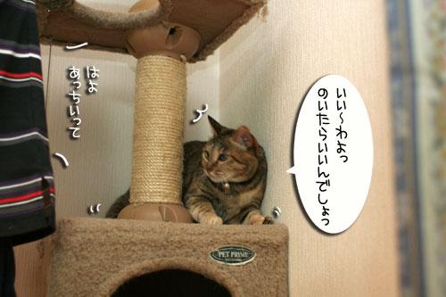 新しいタワーさん★こんにちは前編_d0355333_16543128.jpg