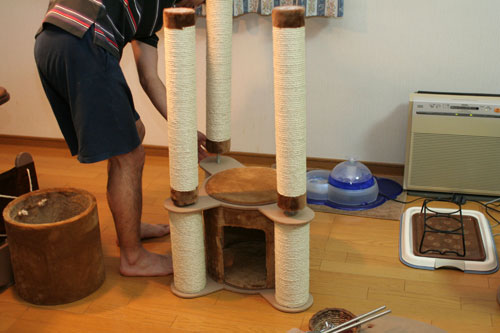 新しいタワーさん★こんにちは前編_d0355333_16543429.jpg