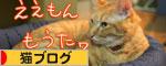 New猫ベッド争奪戦★前編_d0355333_16562470.jpg