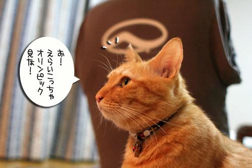 笑子ちゃんのミス_d0355333_16565327.jpg