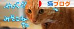 笑子ちゃんのミス_d0355333_16565463.jpg