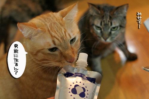 美白の水、飲んでみる?_d0355333_17022632.jpg