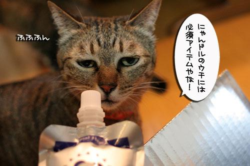 美白の水、飲んでみる?_d0355333_17022745.jpg