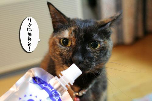 美白の水、飲んでみる?_d0355333_17022748.jpg