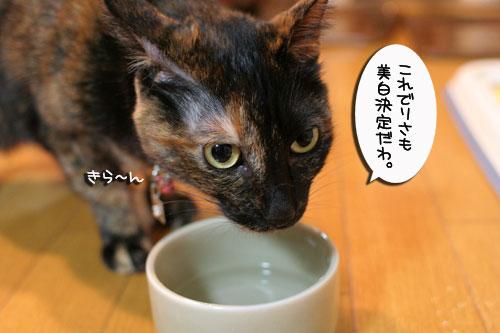 美白の水、飲んでみる?_d0355333_17022960.jpg