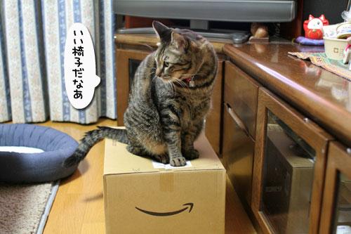 通販の箱。_d0355333_17035716.jpg