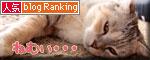 猫の集会_d0355333_18552641.jpg