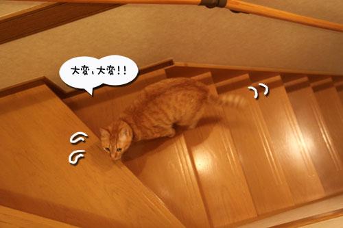 デキる子の主張_d0355333_19031480.jpg