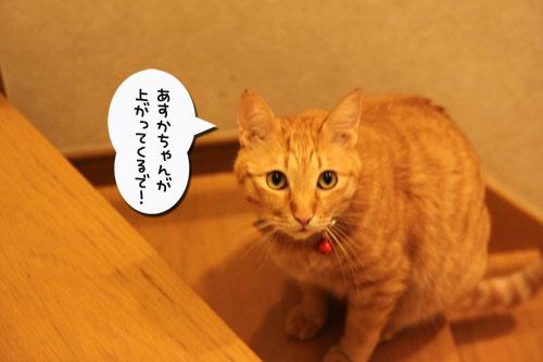 デキる子の主張_d0355333_19031575.jpg