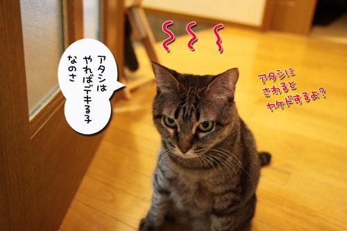 デキる子の主張_d0355333_19031597.jpg