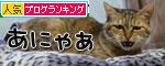 暴風雨の夕方に★後編_d0355333_19044890.jpg