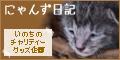 毛色考・黒猫の場合_d0355333_19091370.jpg