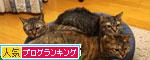 色悪ィ~ずのおケツ張り合い_d0355333_19103734.jpg
