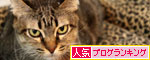 猫ソファをめぐるアホなあらそい_d0355333_19104092.jpg