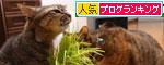 猫草、みんなの反応は_d0355333_19120736.jpg