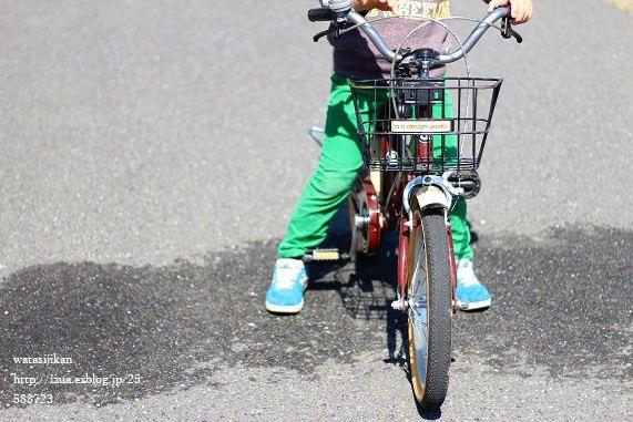 補助輪を外し、自転車に乗る息子_e0214646_11234229.jpg