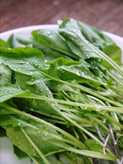 農薬や消毒を一切せずに育ったサラダ用の水耕栽培の生野菜を大好評販売中!_a0254656_17375668.jpg