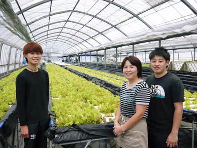 農薬や消毒を一切せずに育ったサラダ用の水耕栽培の生野菜を大好評販売中!_a0254656_18225899.jpg