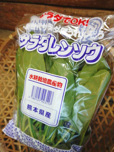 農薬や消毒を一切せずに育ったサラダ用の水耕栽培の生野菜を大好評販売中!_a0254656_1828922.jpg