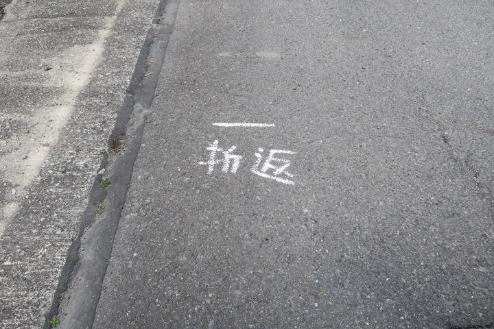 42.195キロ無事完走!_c0132901_1616157.jpg