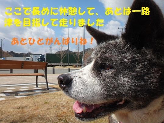f0121712_09501282.jpg